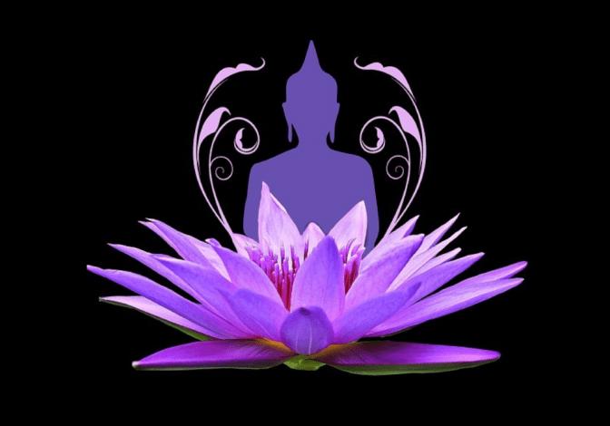 Eine Grafik zeigt eine Lotusblüte mit einem Menschen