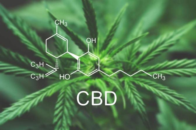 CBD Molekül vor Hanfblättern