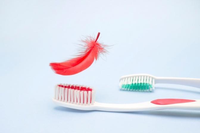 Zahnbürsten mit roter Feder