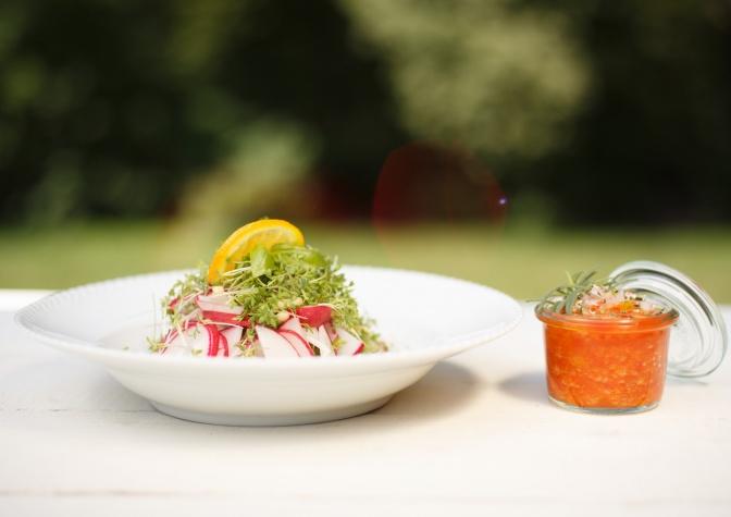 Radieschen-Kressesalat zu Paprikavinaigrette als Vorspeise vom Rohkost Menü