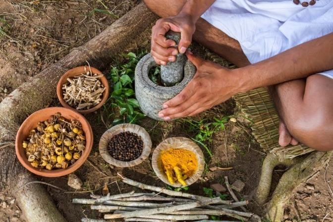 Rasayanas sind Kräuterzubereitungen, die unsere Ojas nähren.