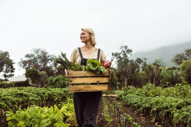 Eine Frau geht mit einem Holzkorb voll mit selbstgepflücktem Gemüse über ein Feld.