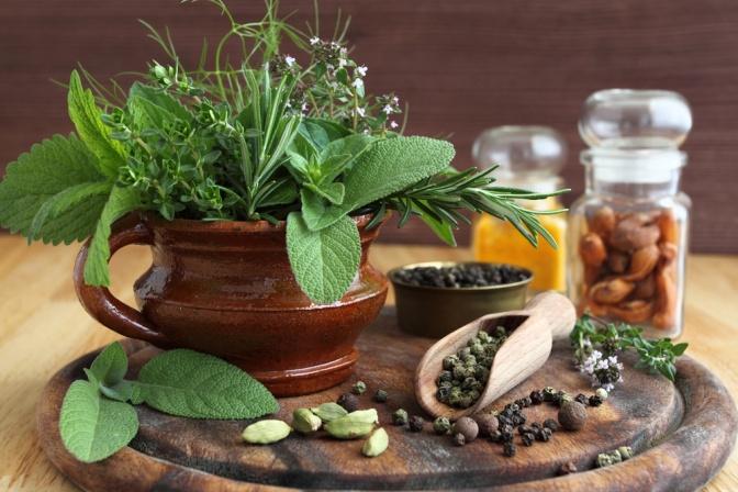 Salbei, Melisse, Minze und andere Gewürze in einem Topf