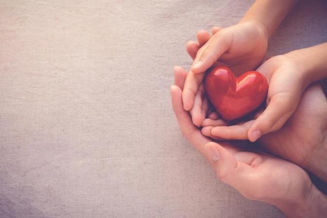 Eine Männerhand, in der eine Frauenhand liegt, die ein kleines rotes Herz auf der Handfläche hält.