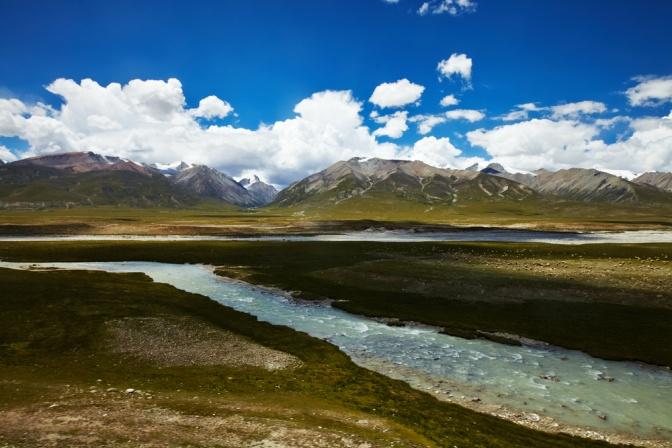 Raupenpilz Ursprung Hochland Tibet