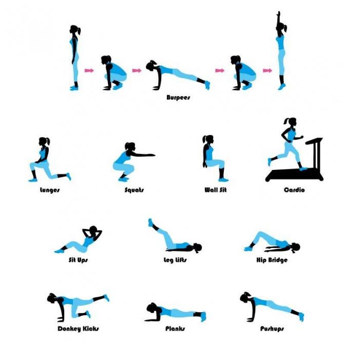 Richtig Trainieren Mit Bewegungscoaching