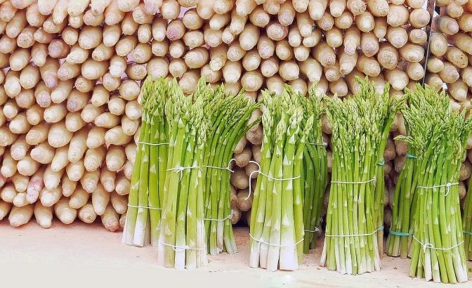 Grüner Spargel liegt vor aufgestelltem weißem Spargel (gesund)