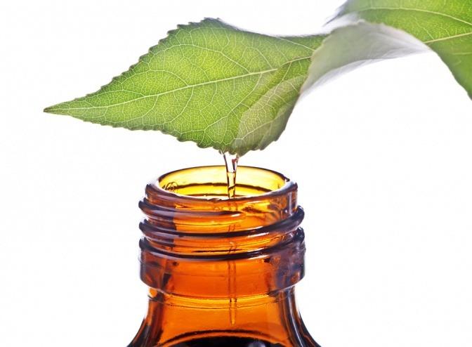 Flüssigkeit vom Blatt fließt in eine Flasche als Symbol für ätherische Öle
