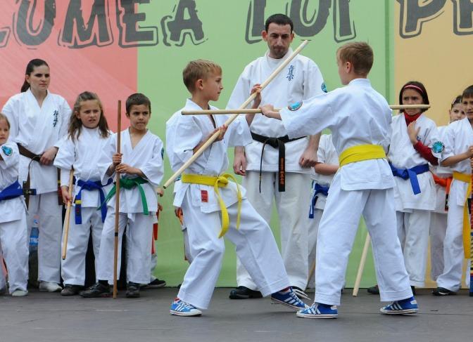 Kinder beim Kampfsport