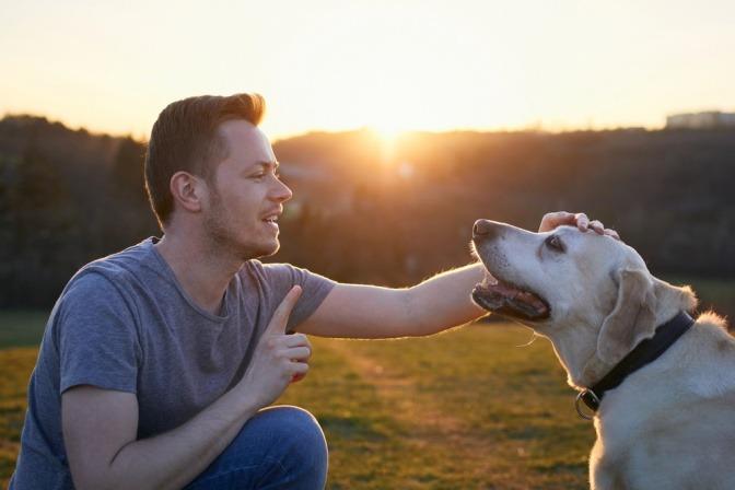 Ein junger Mann bringt seinem Hund geduldig einen Trick bei.