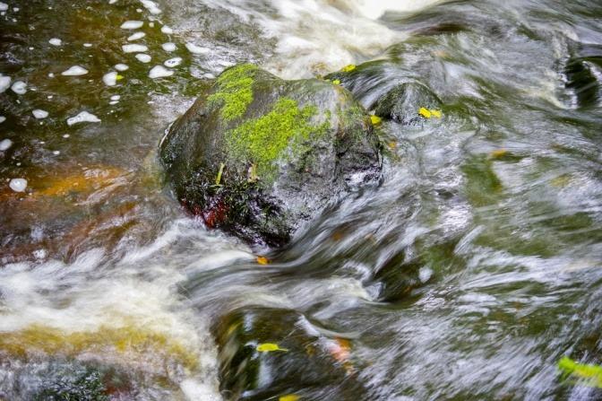 Wasser fließt über Steine