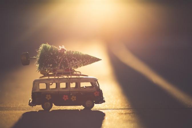 Weihnachtsbaum auf einen Bus geschnallt.