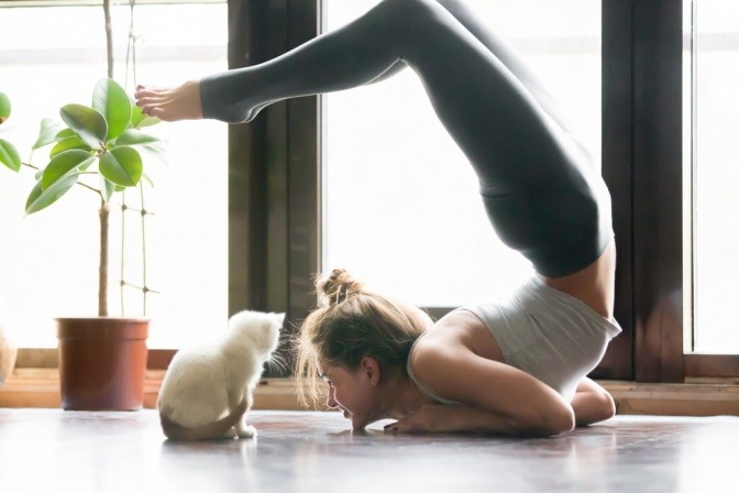 Trainierte Frau beim Yoga