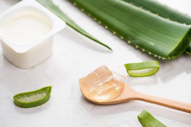 Ein Becher mit Naturjoghurt und ein in Stücke geschnittenes Aloe Vera Blatt auf einem weißen Untergrund.