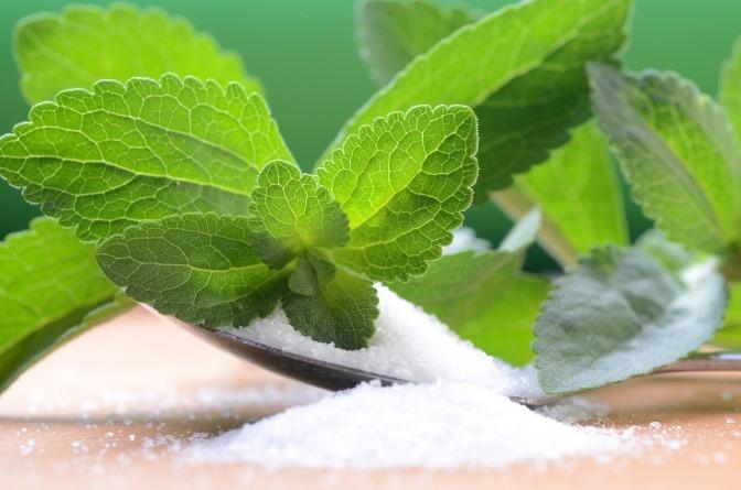 Stevia-Pulver und -Blatt