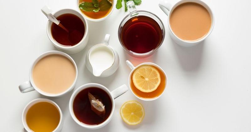 Mehrere Tassen mit verschiedenen Tees