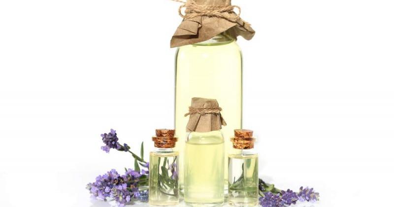 Fläschchen sind gefüllt mit Lavendelöl, daneben liegt Lavendel