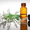 Ein Fläschchen ätherisches Öl steht auf einem Tisch