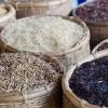 Verschiedene Reissorten von Fairtrade