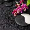 Yin-Yang-Symbol aus Stein