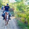Florian Hornig reitet auf einem Pferd durch die Provence